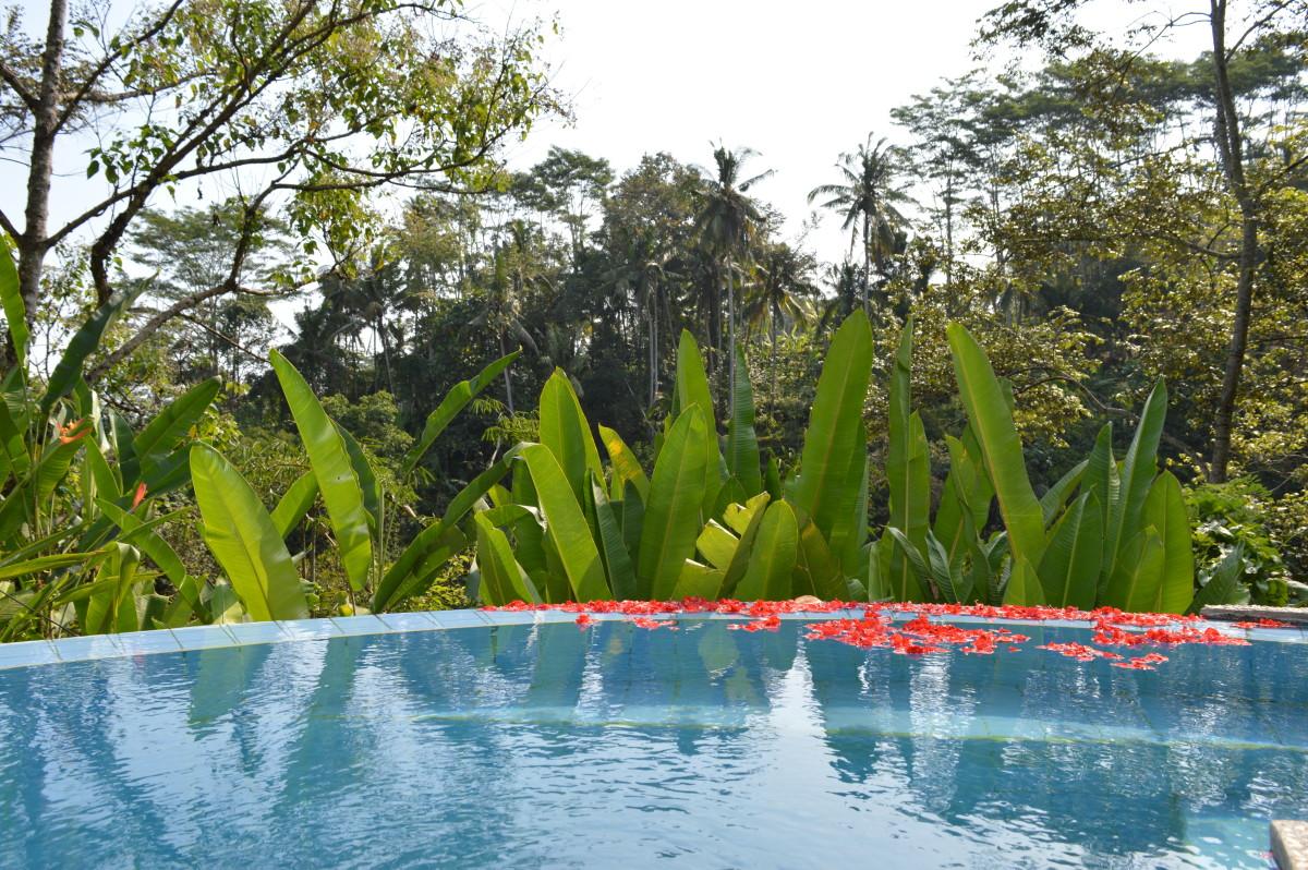 Indonesia 052