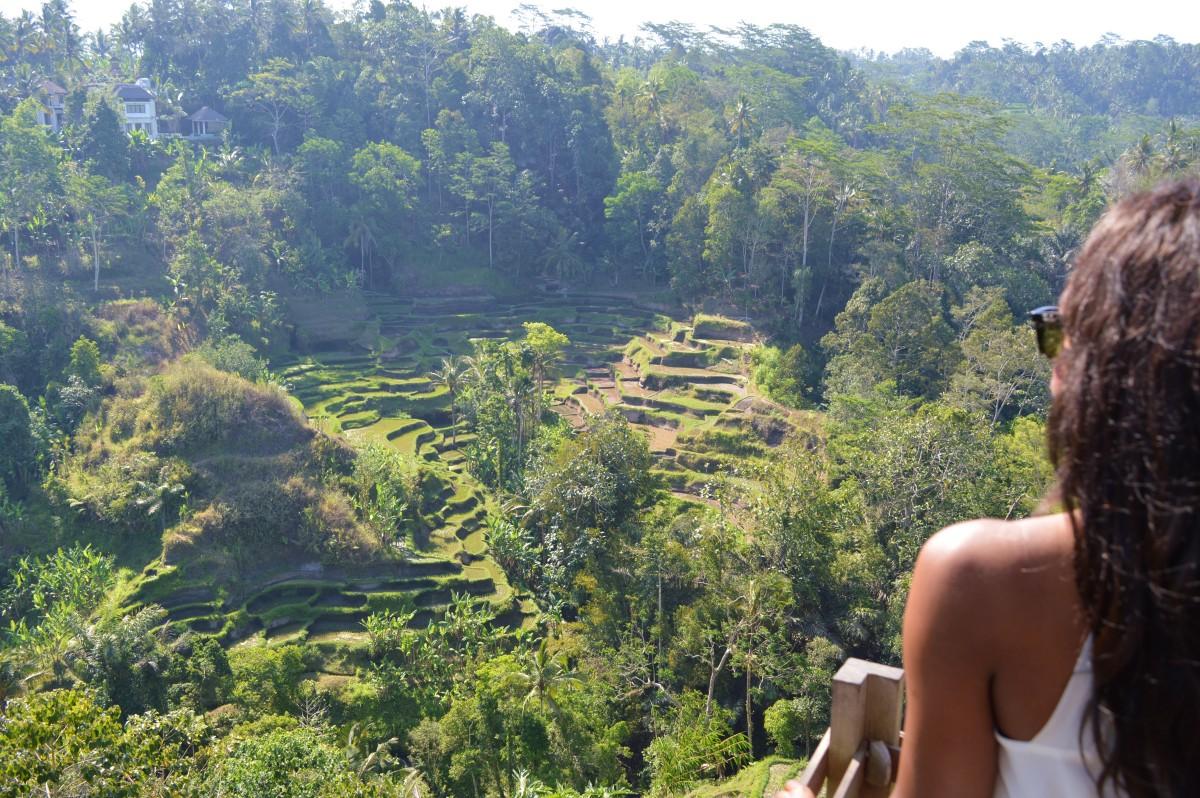 Indonesia 297